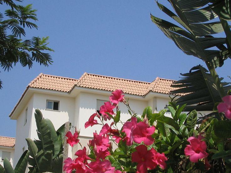 Coppo Chiaro Clay Roofing Tiles