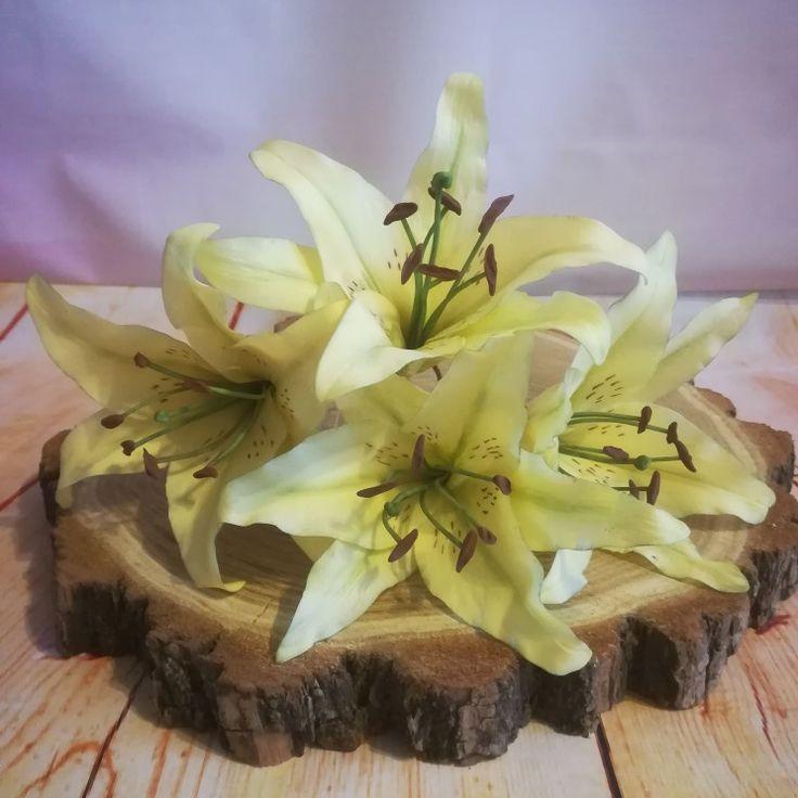 Sugar lily Cukor liliom