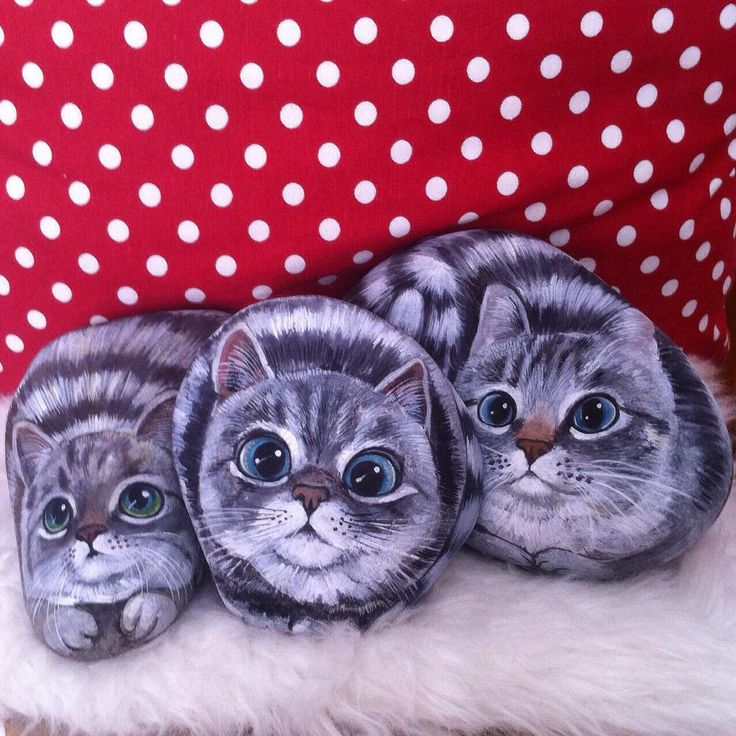 Şaşkın kediler :) #tekir #kedi #nala #cat #doğal #taş #boyama #kediseverler #elyapımı #hediye #ev #dekorasyon #sevimli #hayvanlar #natural #painted #stones #handmade #catlovers #home #decoration #gift