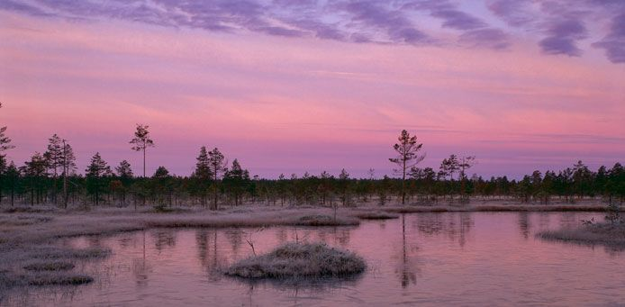 Lauhanvuori National Park - Nationalparks.fi  A winter evening at Lauha Mires. Photo: Timo Nieminen