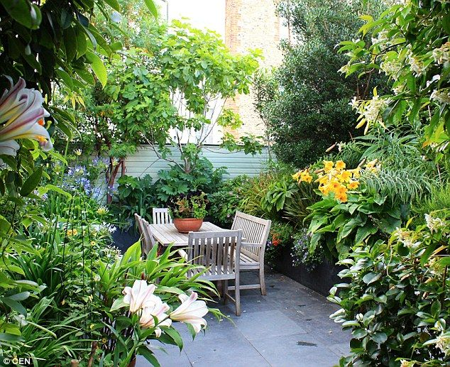 Best 25 small courtyard gardens ideas on pinterest for Best garden design books uk