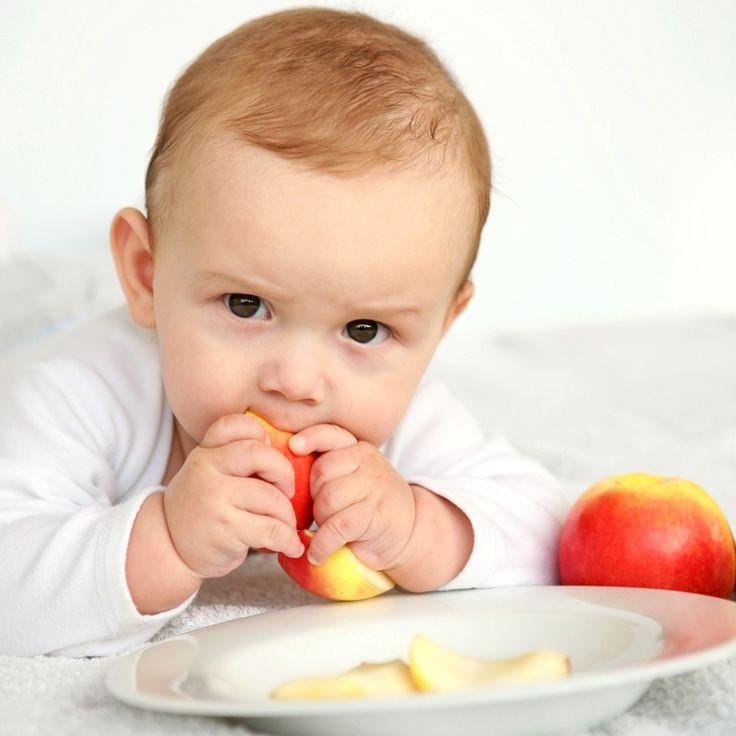 Introdução de alimentos sólidos no pratinho do bebê. Saiba como fazer essa adaptação! #comidinhas