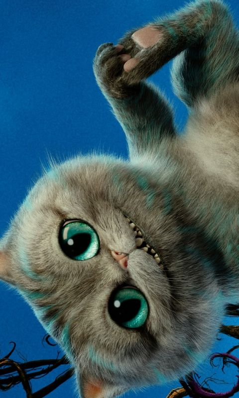 Wallpaper Cute Cats Kittens 480x800 Wallpaper Alice Through The Looking Glass 2016