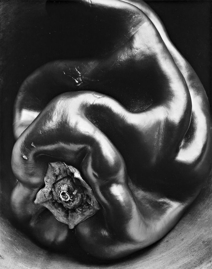 """#35 Pepper"" by Edward Weston... in my opinion one of the best of photographs and one of the best of all photographers..."