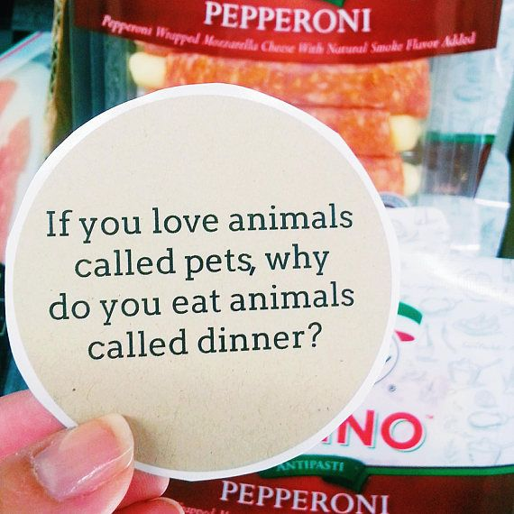 9 vegan activism stickers if you love animals called pets why do you eat animals called dinner