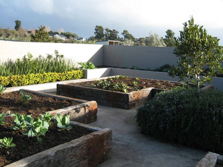 """""""Karaka - Vegetable Planting""""  www.shaferdesign.co.nz"""