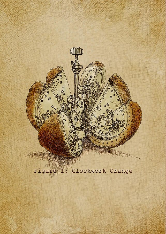 Orange Drawing - A Clockwork Orange by Eric Fan