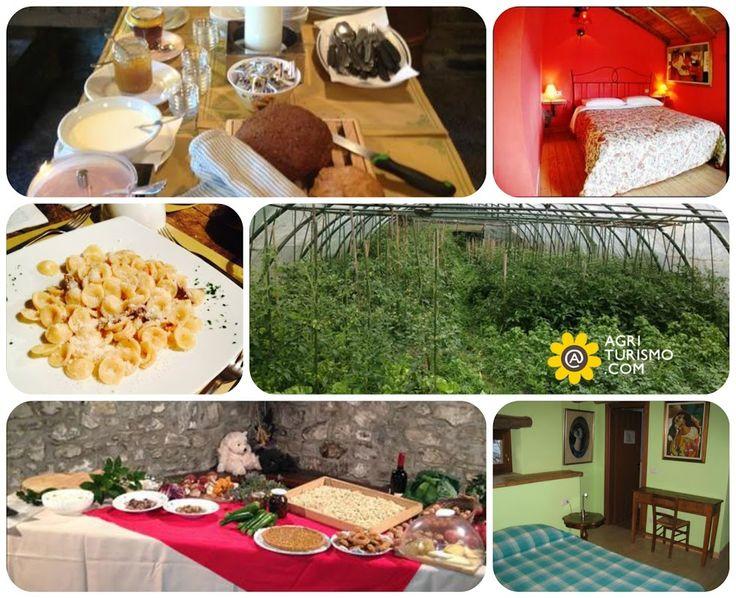 Rispettare la propria terra é la prima regola per rispettare se stessi e gli altri. L'Agriturismo Al Marnich prepara solo prodotti #BIO coltivati con amore ed esperienza. SCOPRI I NOSTRI PREZZI QUI: http://www.agriturismo.com/dettaglioAgriturismo_alloggi.asp?idLingua=1&id=4720  #lombardia #agriturismo #camere #prezzi #bio #prodotti #natura #ricette #cibo #italia #italy #food
