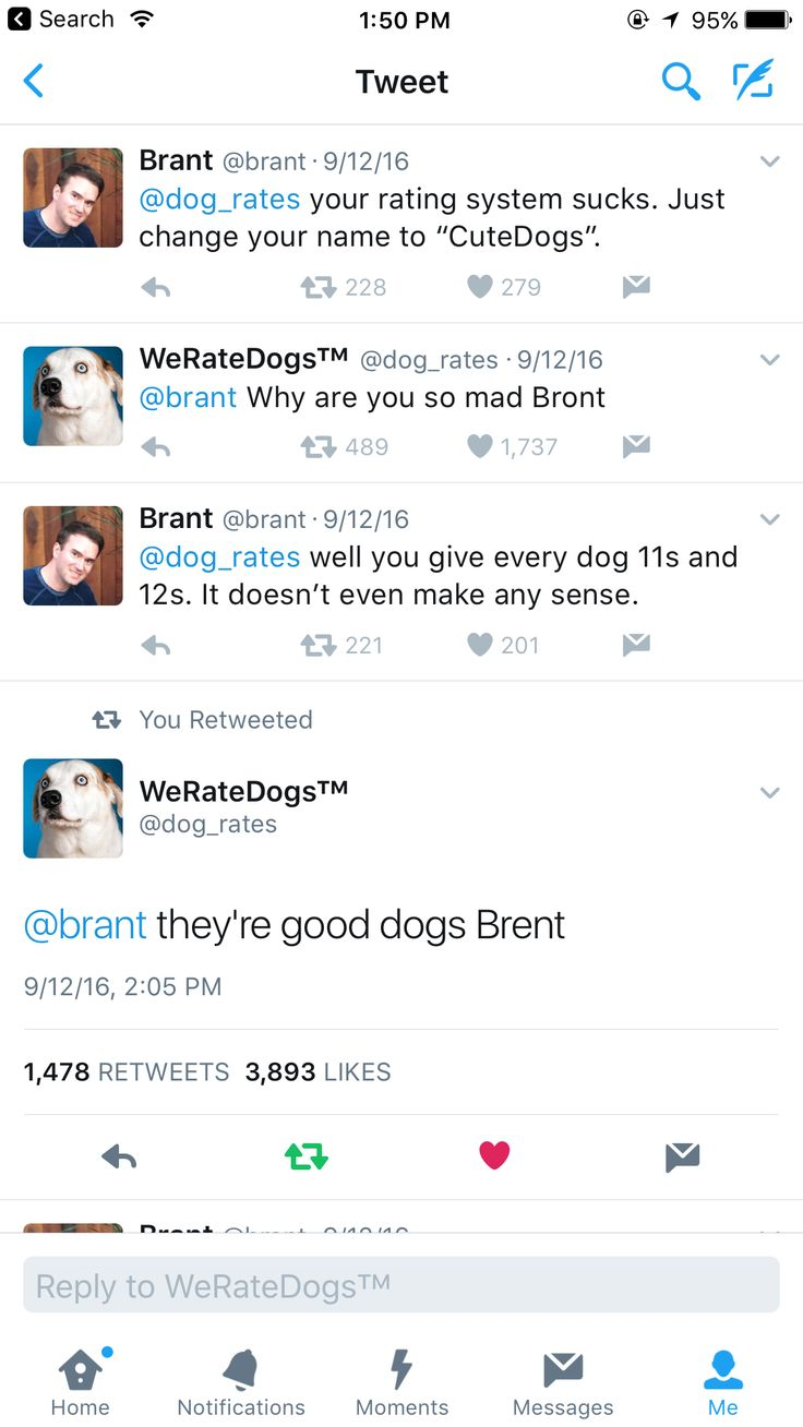 "l192ws over on Reddit writes, ""Brunt gets mad at a dog rating twitter account"" ""I like that he never called him the same wrong name twice"", notes macrolinx. And indeed they do rate dogs. Here's three dogs they've rated recently: 1. This… is a Tyrannosaurus rex. We only rate dogs. Please only send in dogs. …"
