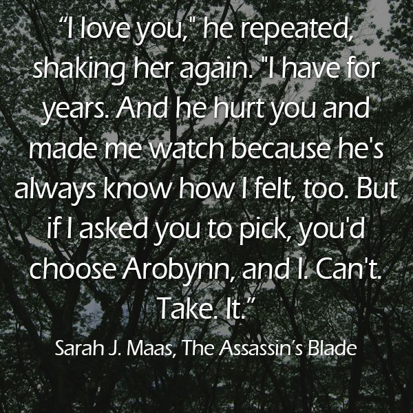Quote from THE ASSASSIN'S BLADE: THE THRONE OF GLASS NOVELLAS by @Sarah Chintomby Chintomby Chintomby J. Maas