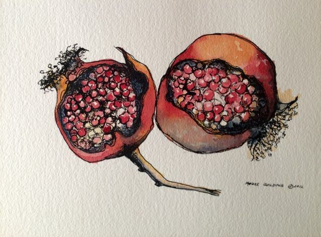 Pomegranate. Pen and ink and watercolour. Buy the original and printed reproductions at redbubble.com/people/emgolding