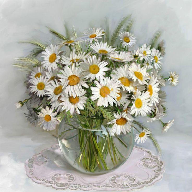 Цветы ромашки купить в спб