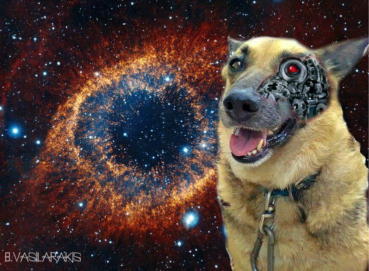 My Astro Dog