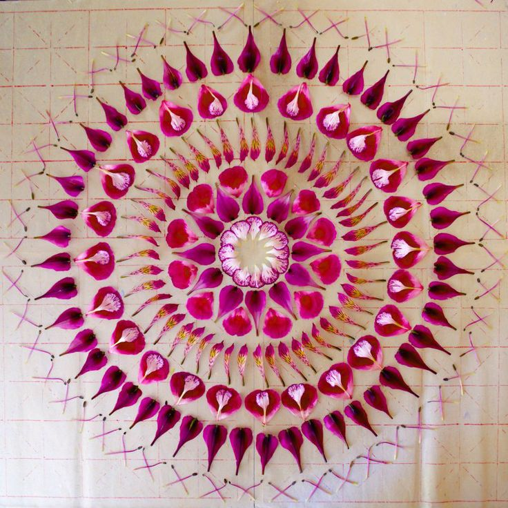 "FLOWER MADALAS BY KATHY KLEIN Amazing work from artist Kathy Klein who creates ephemeral mandalas with petals of daisies, mums and wildflowers in Arizona. The pieces are called ""danmalas"" (the giver of garlands in Sanskrit)"