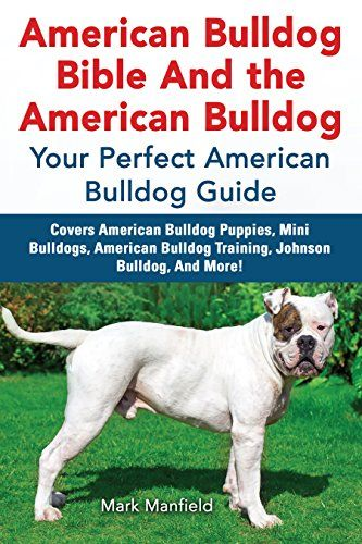 "American Bulldog Bible And the American Bulldog: Your Perfect American Bulldog Guide Covers American Bulldog Puppies, Mini Bulldogs, American Bulldog Training, Johnson Bulldog, And More!:   ""I've owned many dogs- but this was my first American Bulldog,& the thing I liked about this book is that it's really specific American Bulldog Info."" - Sam R, Ridgefield, MNbr /""Well written, concise- lot of really USEFUL info about American bulldogs. M Jacobs, Durham, NCbr /""The most comprehensive..."