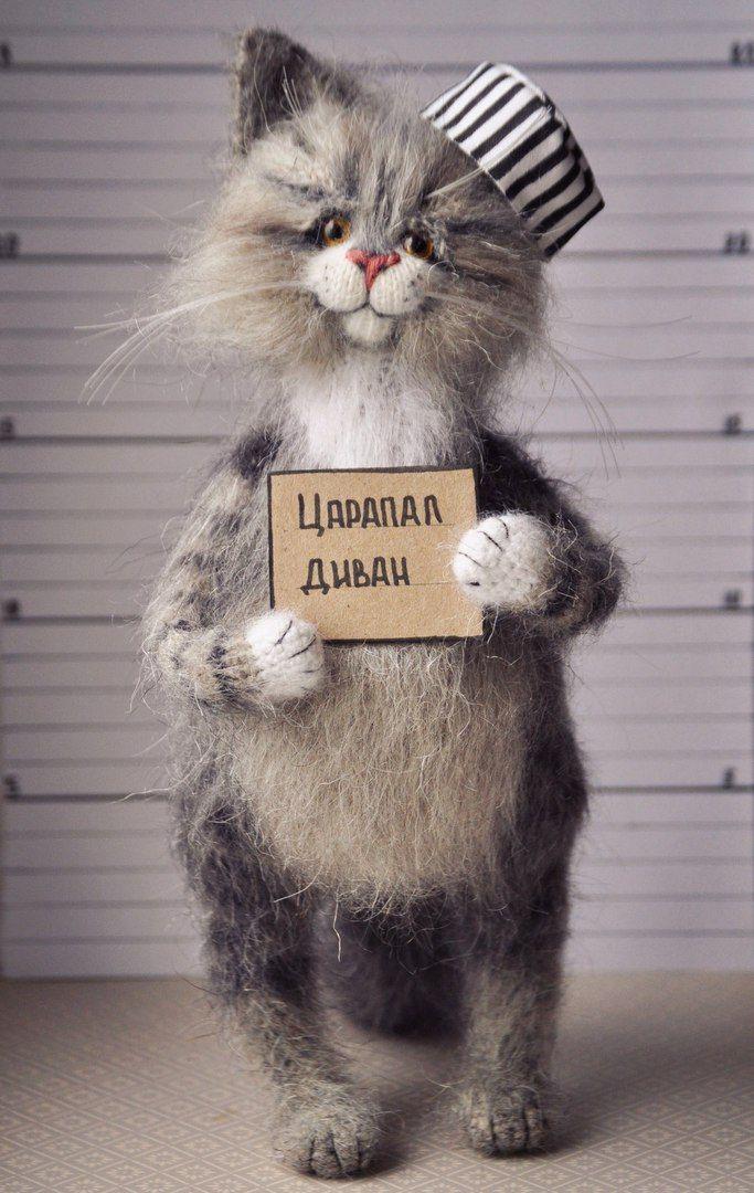мобильных фото кота с табличкой в лапах почти цельно алюминиевый