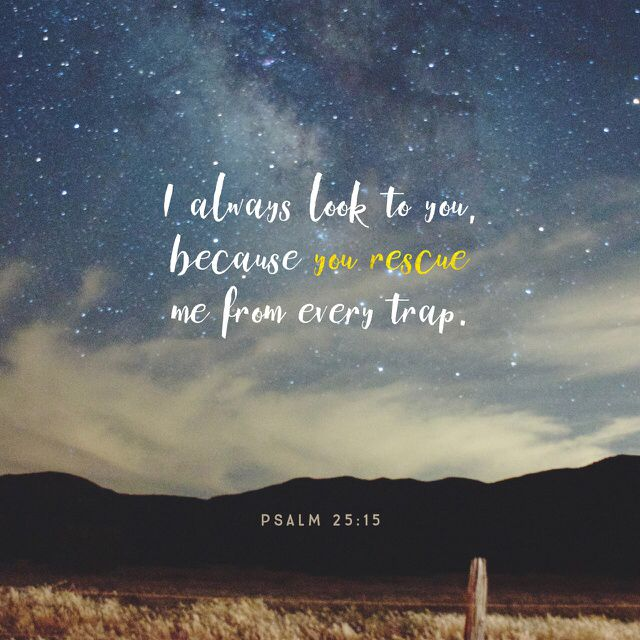 """""""I continually look to the LORD for help, for he will free my feet from the enemy's net."""" Psalms 25:15 NET http://bible.com/107/psa.25.15.net"""
