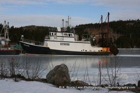 Boats, Conception Harbour, Conception Bay, Newfoundland and Labrador
