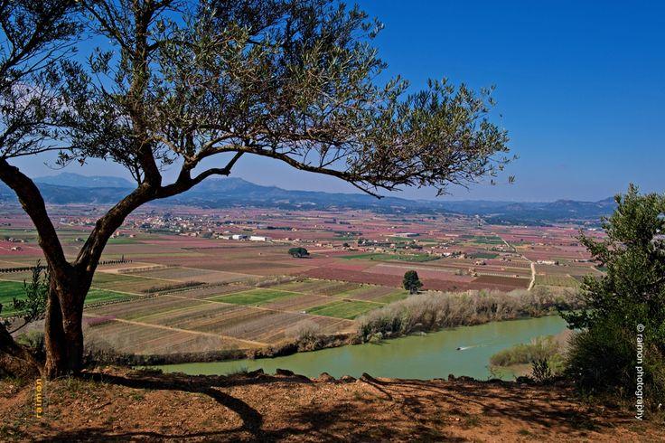 Comarca de la Ribera d'Ebre