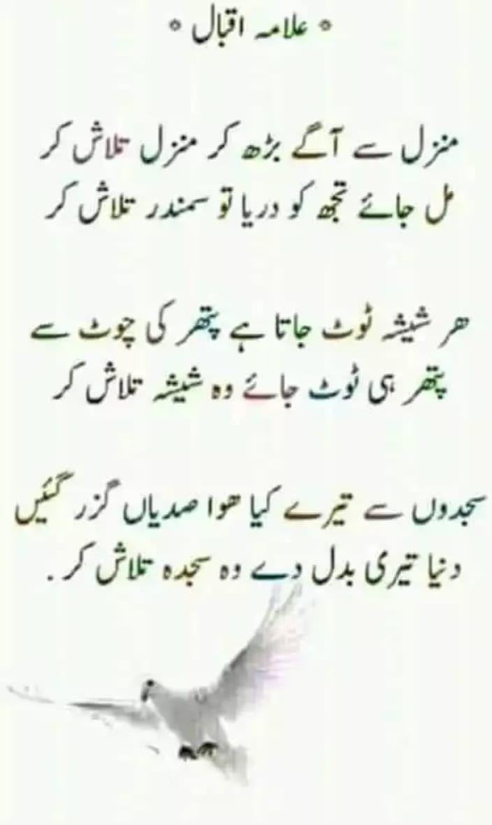 Laiba Rana Urdu Poetry Ghalib Love Poetry Urdu Iqbal Poetry