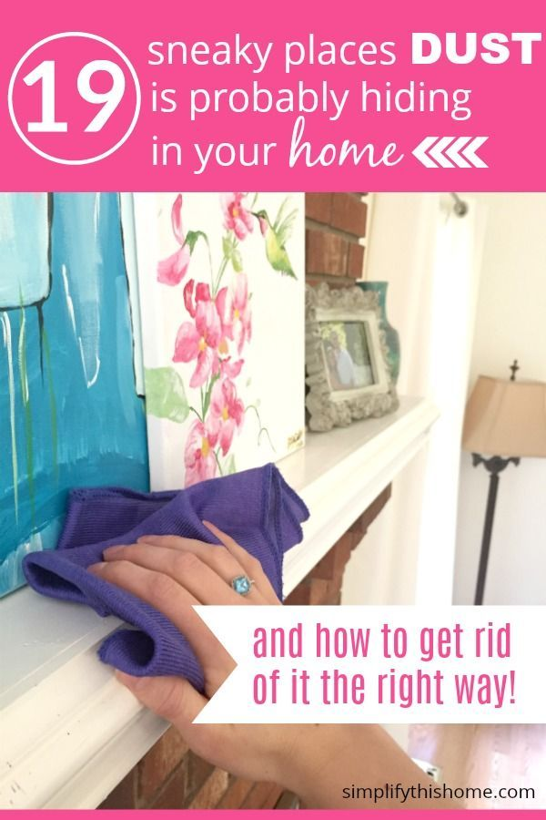 How To Get Rid Of Dust In Your Home In 2020 How To Get Rid How To Get Pet Dander