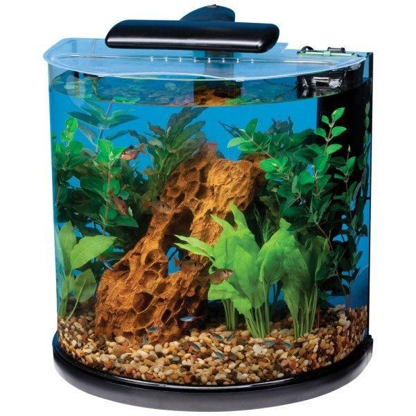 21 Best Images About Acrylic Fish Tanks On Pinterest