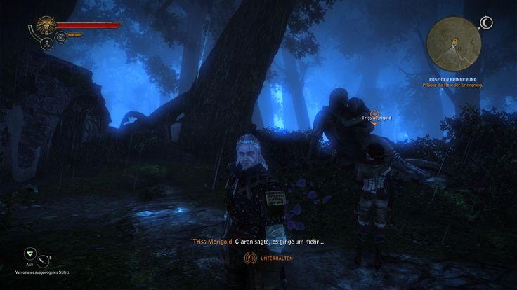 Witcher 2 Flotsamwald