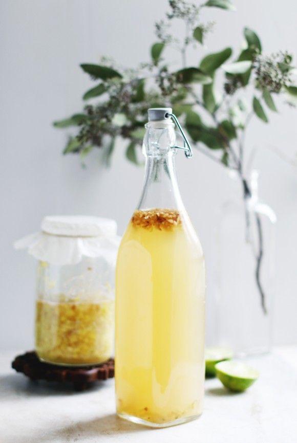 Homemade Fermented Ginger Ale // BLDG 25 Blog