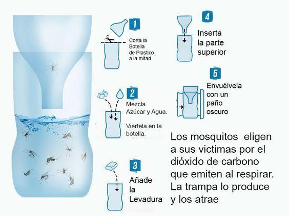 El mejor truco para evitar que tú casa se llene de mosquitos - Taringa!