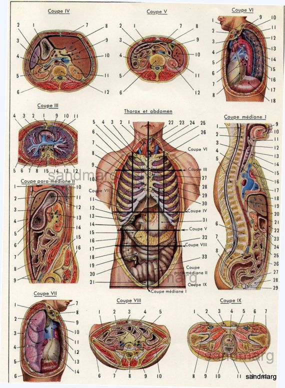 86 Best Medical Images On Pinterest | Medical, Ephemera And Hospitals