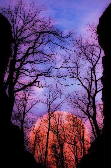 Ein großer Vollmond geht genau zwischen den Felswänden einer schmalen Schlucht im Wald auf. Der Mond ist eingefügt, aber wie die Landschaft ein Foto von mir.