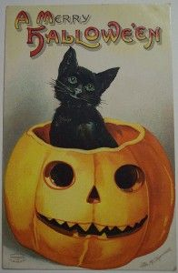 vintage-halloween-postcard-ellen-h-clapsaddle-cat-in-jackolantern