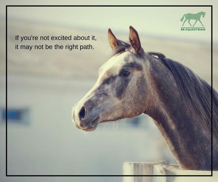 #equestrian #quote