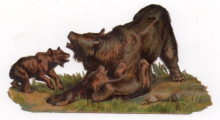 Chromo découpi oblaten glanzbild die cut  - Ours & ses petits  12,5 cm: