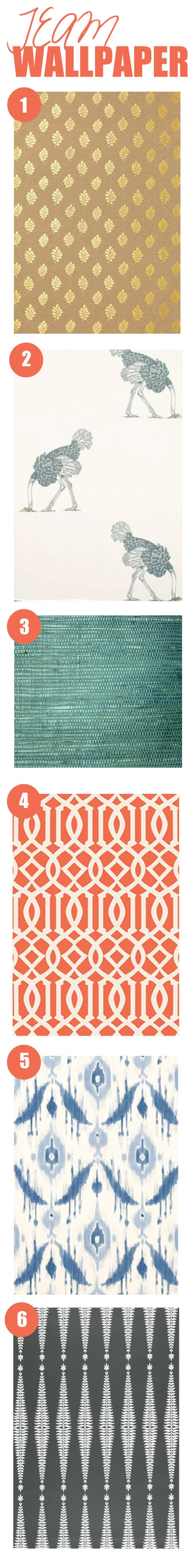 Team Wallpaper  Gold Leaf, Ostrich, Blue Grasscloth, Orange Imperial Trellis, Blue Ikat, Charcoal Ferns