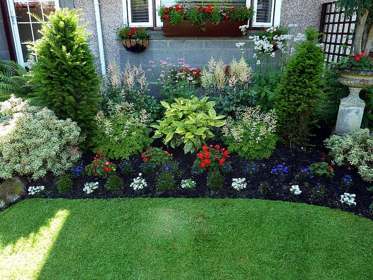 17 best images about landscape on pinterest gardens herringbone shade perennial flower bed aruncus aethusifolius at either side of the aucuba variegata the mightylinksfo