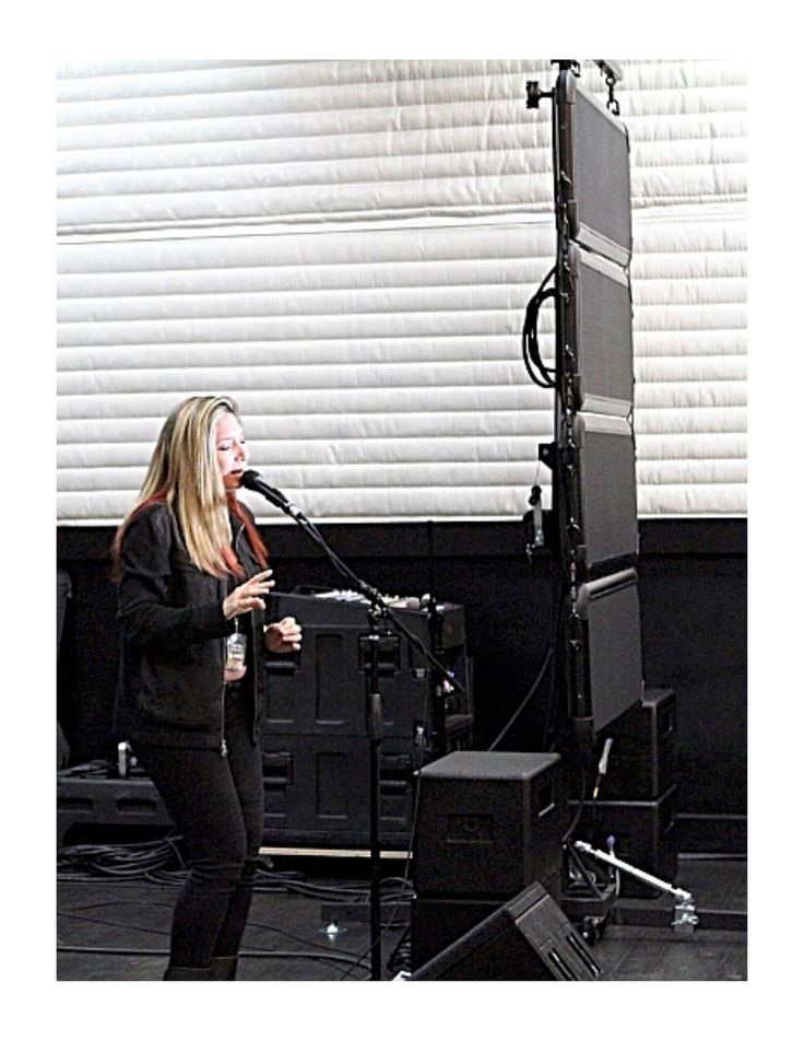 Flat panel concert speakers