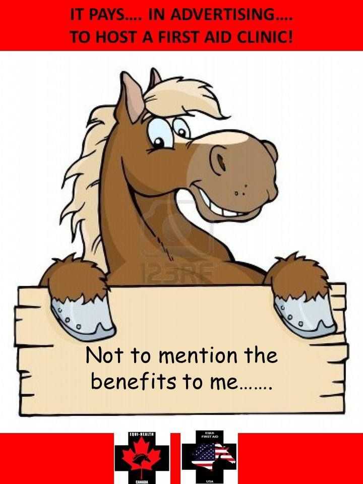 Visit the website at www.equihealthcanada.com for a complete listing of course offerings and details on hosting (it's super easy - you just need to have a horse and a place to get out of the elements)  FUN - LEARNING - HANDS ON ... and it just might save the life of a horse. All ages. All experience levels. All abilities.  #equihealthcanada #horse #firstaid #horses #ehc #deal #training #instructor #instructors #program #emergency #disaster #planning #preparedness #certification #job