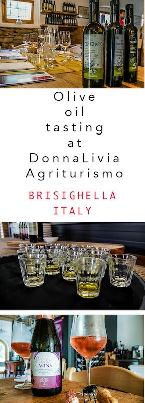 A great day trip from Bologna - Experience local food, wine and olive oil tasting at DonnaLivia Agriturismo | Bologna day trips | Bologna excursions | Things to do around Bologna | Things to do in Bologna | Day tips from Bologna by car  #Bologna #Agriturismo #Italy