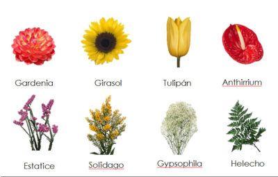 imagenes de flores con nombres exoticas