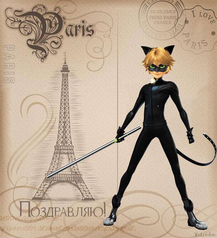 Леди баг и супер кот открытка