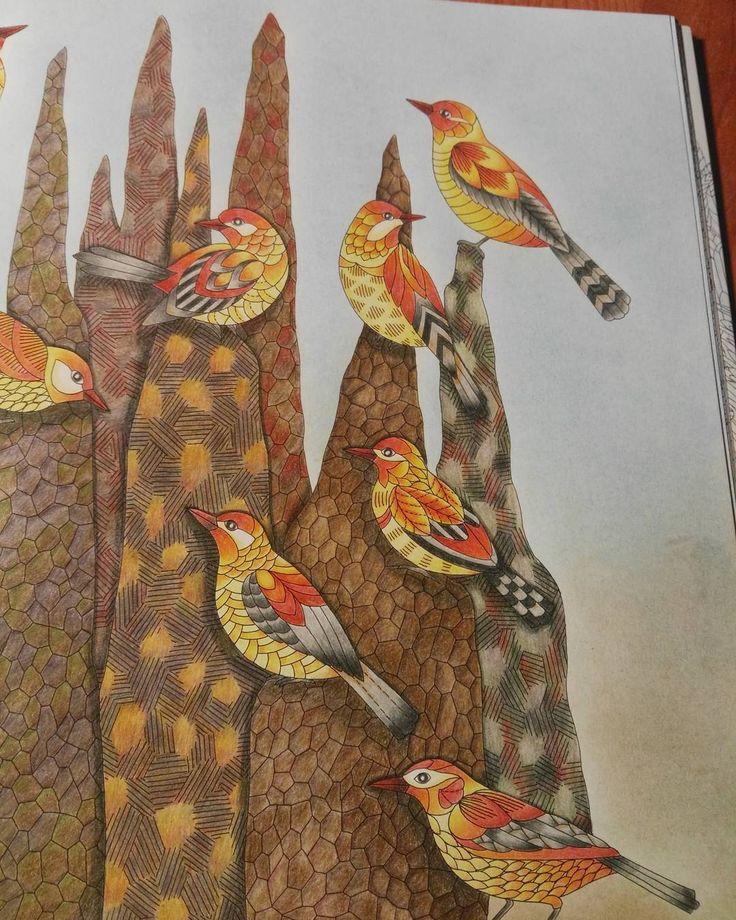 Milliemarotta Wildsavannah Marcoraffine Adult ColoringColouringColoring BooksColored PencilsAnimal