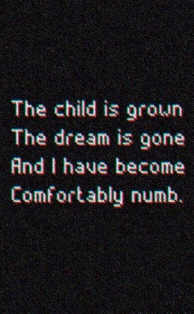 This is where I was headed when my children left home for years. It took YEARS of hard work to move on & be OK with living with myself. I no longer become numb. Comfortably Numb | Pink Floyd