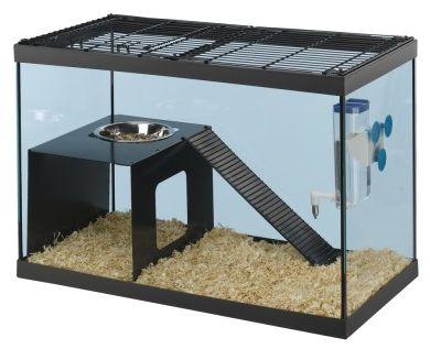 Rymningssäker hamsterbur i glas med gnagsäker metallinredning. Ratatout 60 är perfekt till gerbiler,hamstrar fyll upp med rikligt bottenströ för djuren att gräva runt i, utan att det stänker ut ur buren! Ferplast Ratatout lämplig för Hamstrar