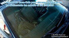 L'acide phosphorique du Coca-Cola décape la saleté et les moustiques en 2 temps 3 mouvements.  Découvrez l'astuce ici : http://www.comment-economiser.fr/nettoyer-pare-brise-coca-cola.html?utm_content=buffer93c3e&utm_medium=social&utm_source=pinterest.com&utm_campaign=buffer