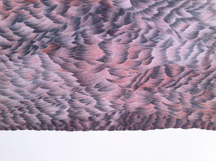 files/33-etendue muette/04-nuage-rouge-dessin.jpg