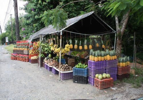 ☀Puerto Rico☀Fruit stand in Puerto Rico.
