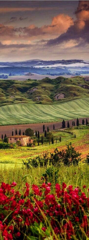 Val de...Orcia.-Tuscany.-Italia.