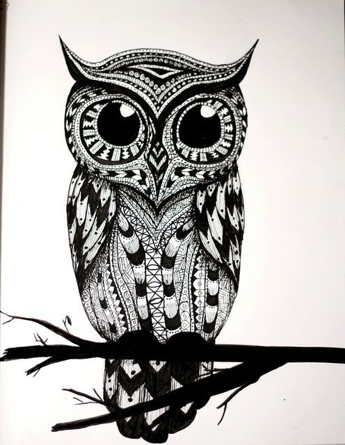 owl drawings black and white - Google Search