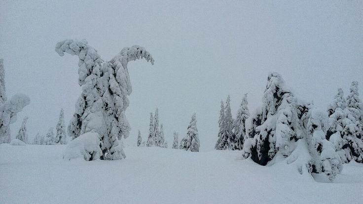 Vinter, Skrim - Winter in Norway